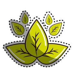Sticker green leaves eco health food vector