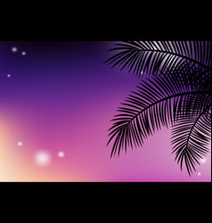 Summer tropical backgrounds with palms and sunset vector