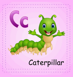 animals alphabet c is for caterpillar vector image