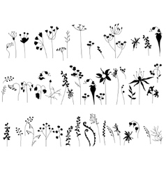 Collection with stylized forest flowers and herbs vector image