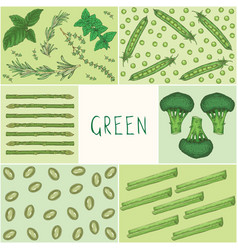 education game green color vegetables vector image