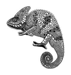 Entangle stylized chameleon hand drawn reptile vector