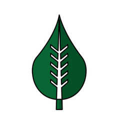 Leaf plant ecology symbol vector