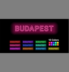 Neon name budapest city vector