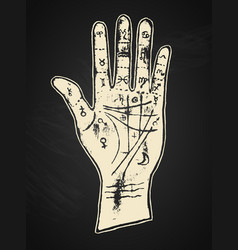 palmistry hand on a black background vector image
