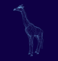 polygonal giraffe made from blue lines on a dark vector image