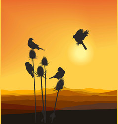 small birds on a thistle vector image