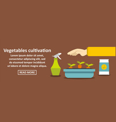 vegetables cultivation banner horizontal concept vector image