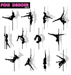 Pole dancer set vector image
