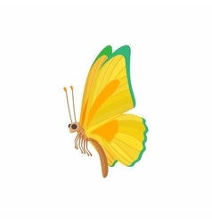 Yellow-green butterfly icon cartoon style vector image