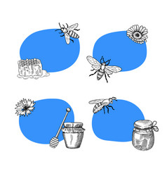 set of stickers with hand drawn honey vector image vector image