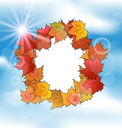 autumn card with leaves maple on blue sky vector image