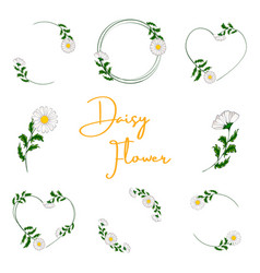 bouquet fresh flowers vector image
