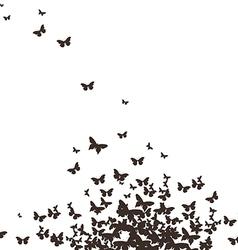 Butterflies black design vector
