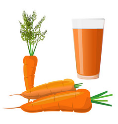carrot juice and fresh carrots vector image