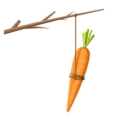 Carrot on a stick vector