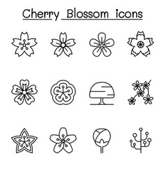 cherry blossom japan sakura icon set in thin line vector image