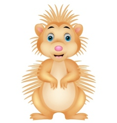 Cute porcupine cartoon vector image