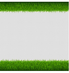 green grass borders transparent background vector image