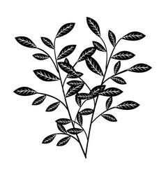 Hand-drawn leaves design vector