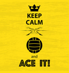 keep calm volleyball vector image