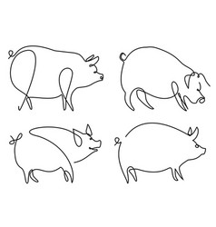 pig one line drawing vector image