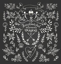 Set of floral hand-drawn elements on the vector