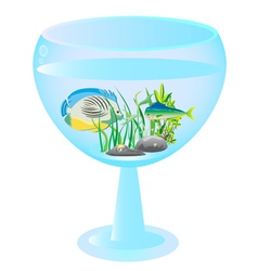 tall wine glass aquarium with fishes vector image
