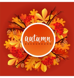 Autumn border with oak and chestnut leaves rowans vector