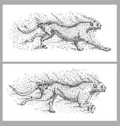 cheetah run particle vector image