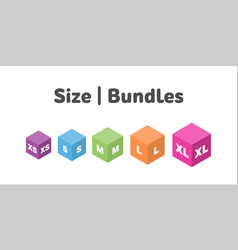 Different size bundle icons set literal vector