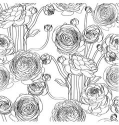 Elegant seamless pattern with ranunculus flowers vector