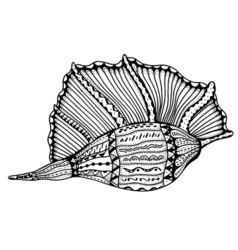 Entangle stylized shell vector