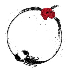 Red poppy and scorpion vector