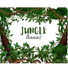 Tropical lianas frame background vector