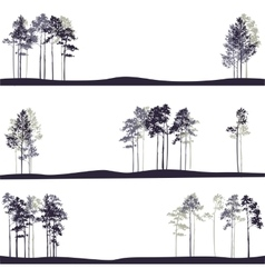 set of different landscapes with pine trees vector image vector image