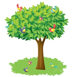 A tree and birds vector