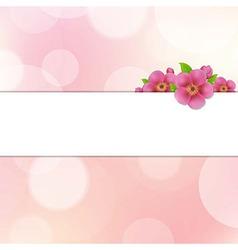 Bokeh Background With Sakura Flowers vector image