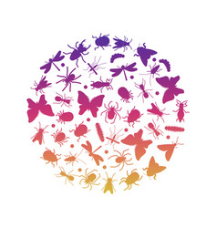 bright silhouette of insects icons insect round vector image