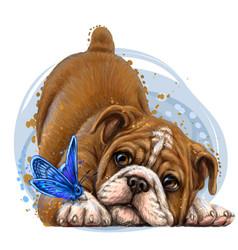 bulldog wall sticker color drawing portrait vector image
