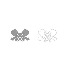 Pelvis skeleton grey set icon vector