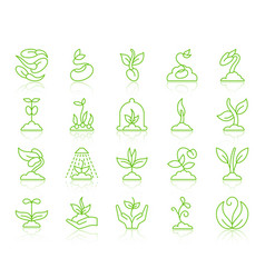 sprout simple color line icons set vector image