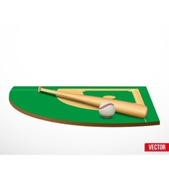 Symbol of a baseball game and field vector image