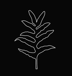 white line art of fern leaf tropical jungle leaf vector image