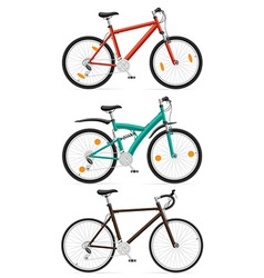 bicycle 11 vector image