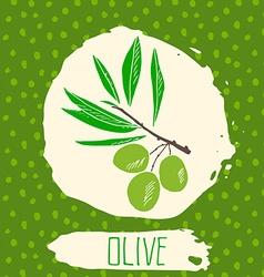 Olive hand drawn sketched fruit with leaf on vector image
