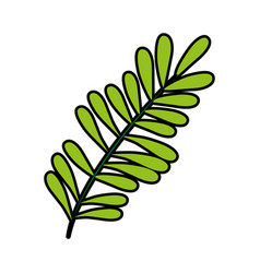 leaf or leaves icon image vector image vector image