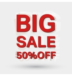 Big sale icon vector image