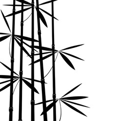 Black and white bamboo vector