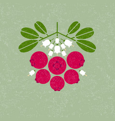 cowberry leaves flowers shabby vector image
